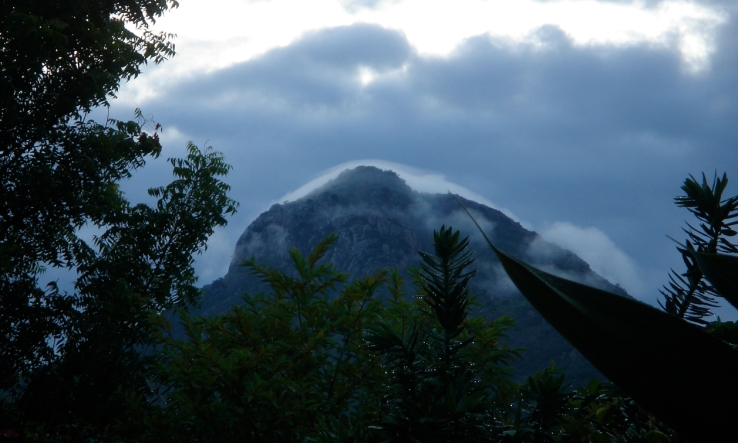 White Capped Arunachala