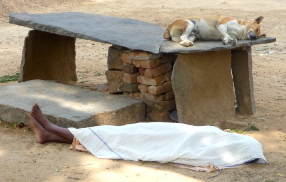 Dog and Man Asleep by the Roadside, Tiruvannamalai, South India