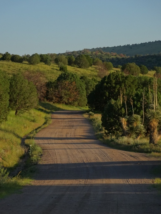 A Deserted Road in Rural New Mexico......aaaah.....